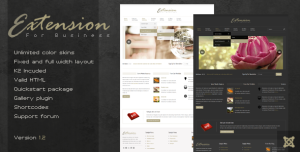 Extension - Premium Joomla Template